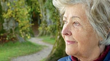 Belangrijke Aanvullingen bij een Plantaardig Dieet voor mensen die ouder zijn dan 65 jaar